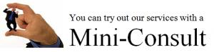 Mini-Consult